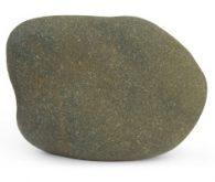 Pomacanthus Rock