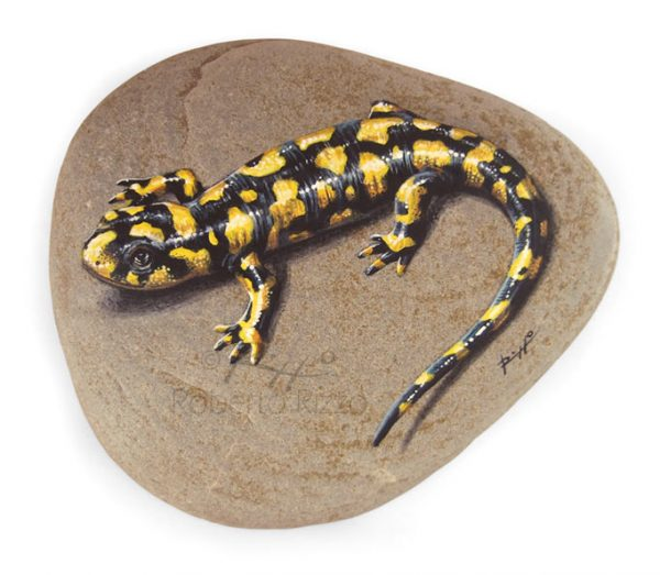 Tiger salamander painting
