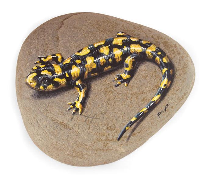 Tiger salamander painting