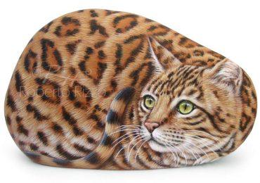 Bengal Cat Price Breeding