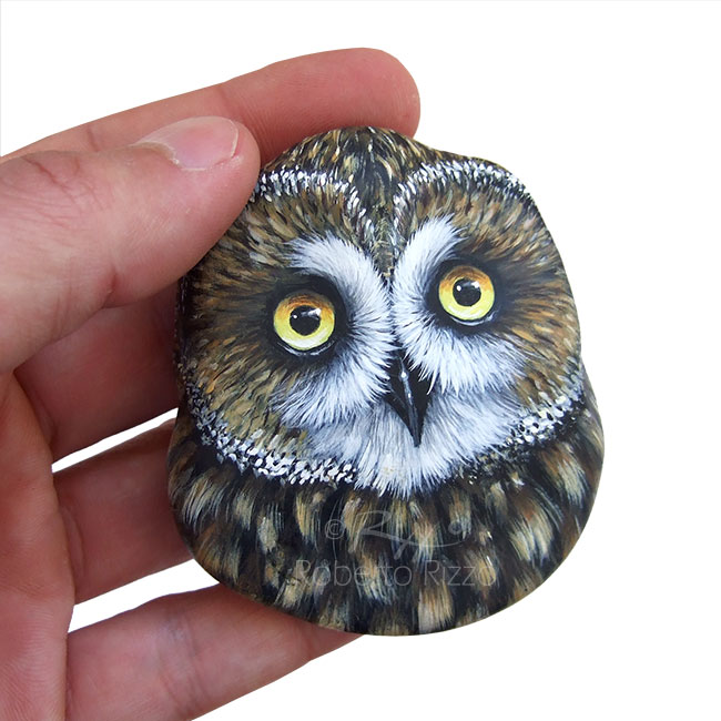 Short Eared Owl Nest A Fantastic Lucky Charm To Decorate