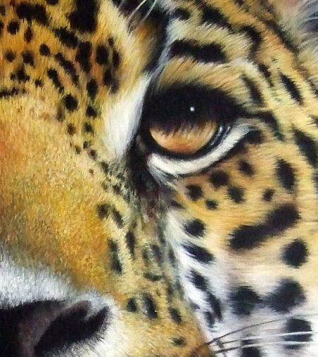 Wild Chiaroscuro Detail