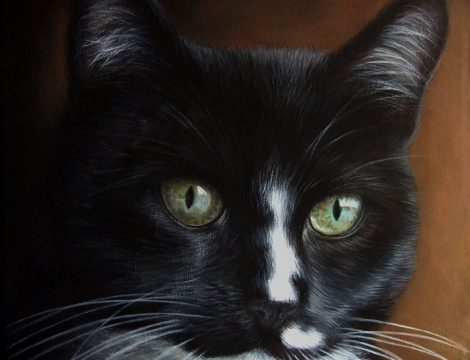 Cat Portrait On Canvas From A Photo