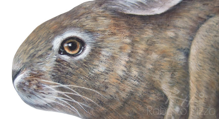 Hand painted hare on a sea stone