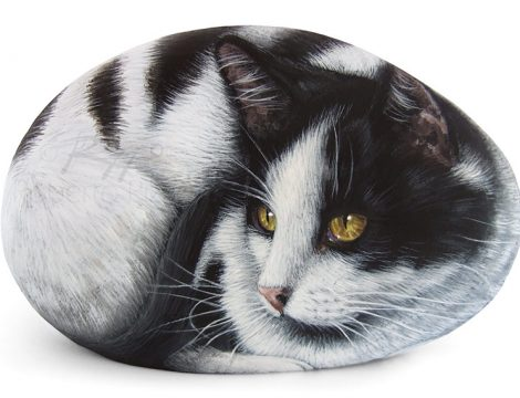 Black And White Cat Portrait Commission