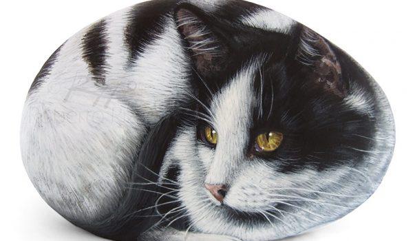 Black And White Cat Portrait Commission
