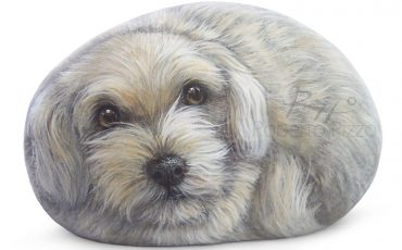 Sweet Puppy Painted On A Sea Rock