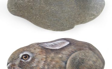 Rare Rock Turned Into A Running Hare