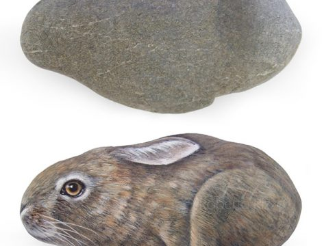Hand Painted Hare Rock Painting Art By Roberto Rizzo