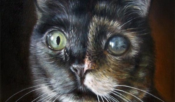 Cat Painting On Canvas