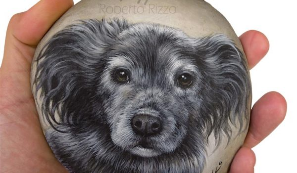 Custom Dog Portrait On A Flat Rock