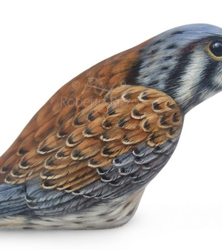 Hawk Painted On Rock With Acrylics