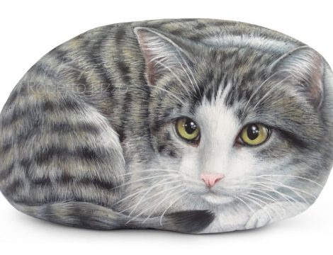 Cat Portrait On A Sea Rock By Roberto Rizzo
