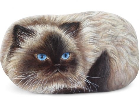 Painted Rock Cat On Commission