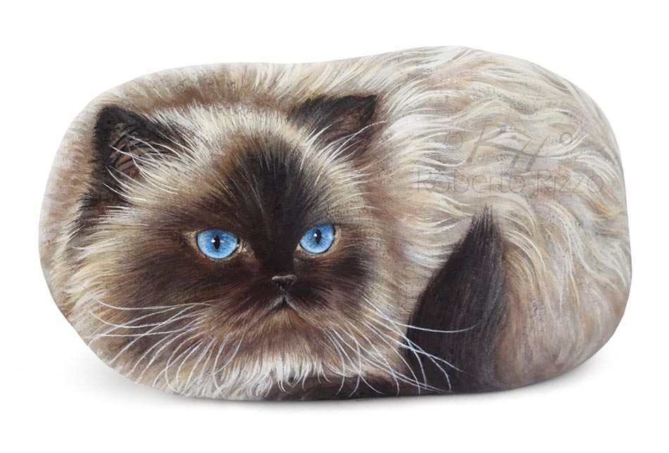 A Gorgeous Himalayan Portrayed On A Rock Rock Painting
