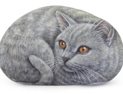 Carthusian Cat Portrayed On A Sea Rock