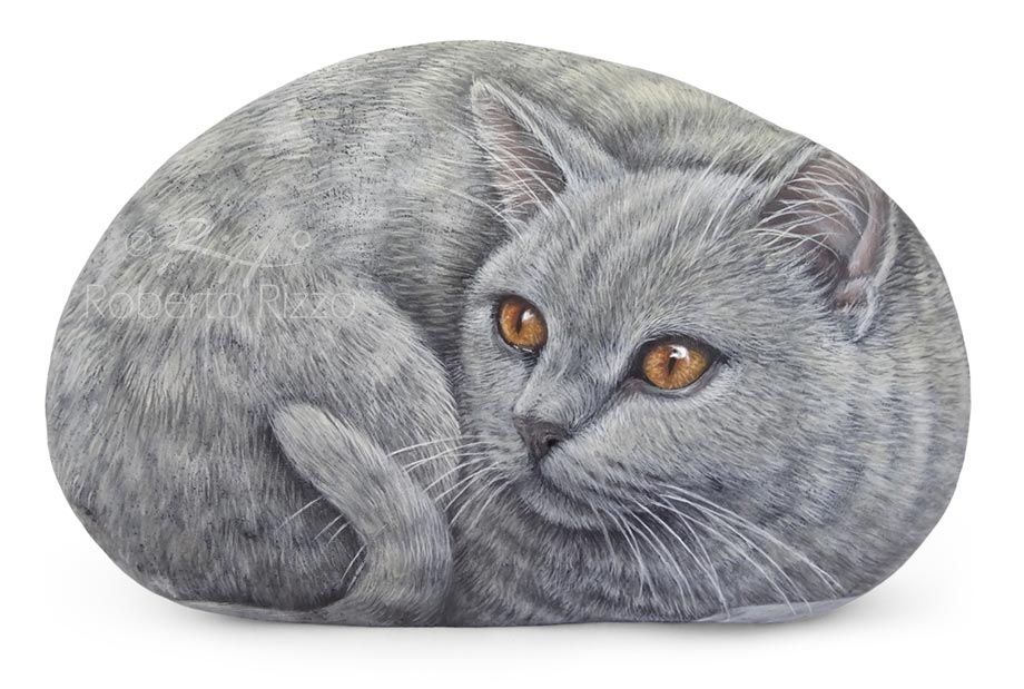 Carthusian cat portrayed on a sea rock