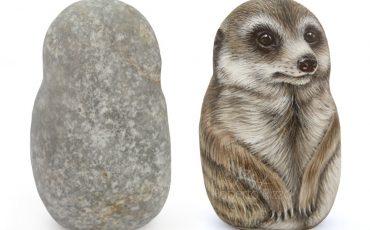 A Cute Rock Painted Meerkat