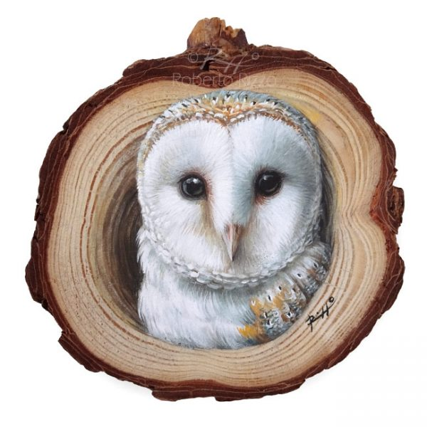 Wood slice painting with barn owl