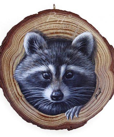 Raccoon's Lair