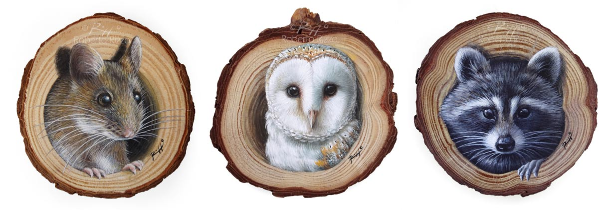 Original wood slice wildlife paintings by Roberto Rizzo