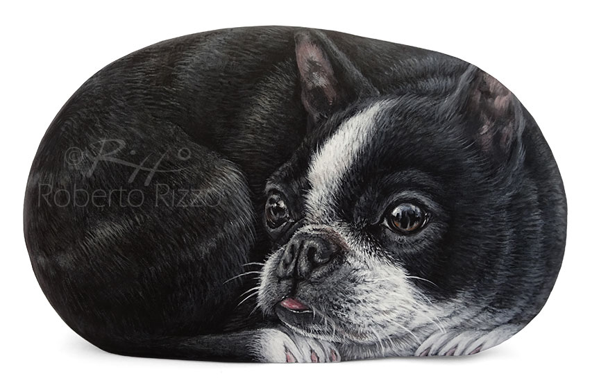 Hand painted bulldog on rock