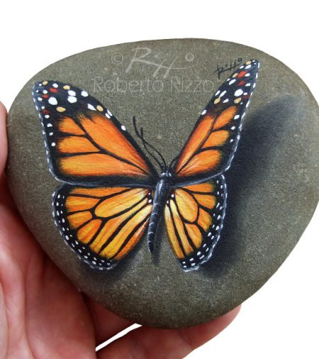 Butterfly Hand Painted On Rock