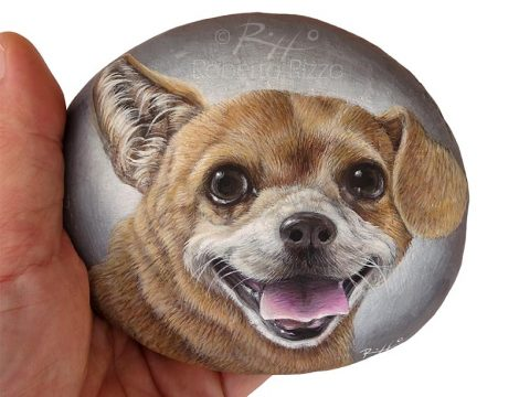Close Up Dog Portrait On A Rock