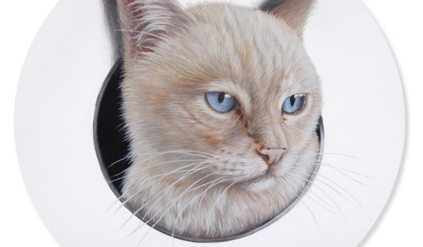 Custom Handpainted Cat Portrait